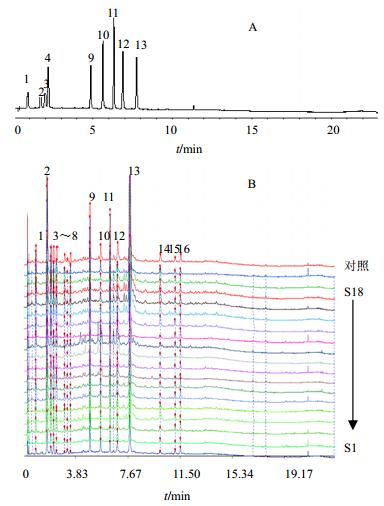 电路 电路图 电子 原理图 384_506 竖版 竖屏